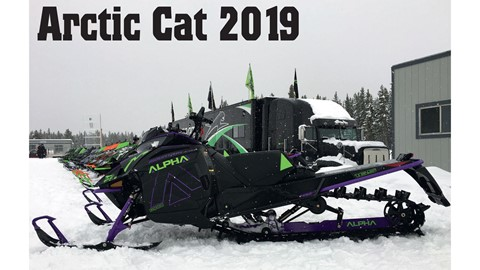 Arctic Cat 2019
